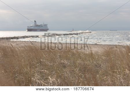 A passenger ferry goes to sea in autumn on a background of yellow grass on the beach and the lighthouse