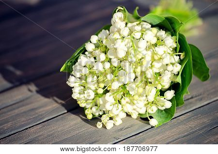 lily of the valley with green leaves on a wooden background for greeting good day
