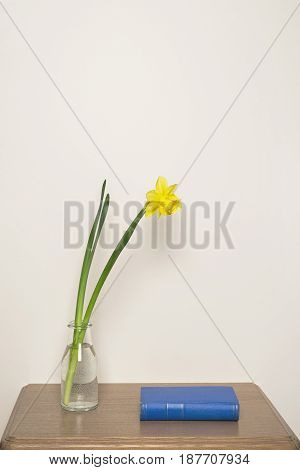 Yellow narcissus in vase and blue book on the table