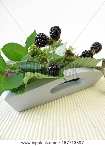 Still life with wild blackberries on tray