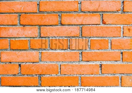 Brick Wall Of Orange Brick, In The Middle Row Of Bricks With Butt.