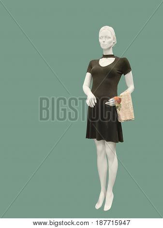Full-length female mannequin wearing brown knitted dress against green background. No brand names or copyright objects.