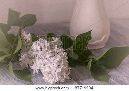 A sprig of white lilac lies next to a vase
