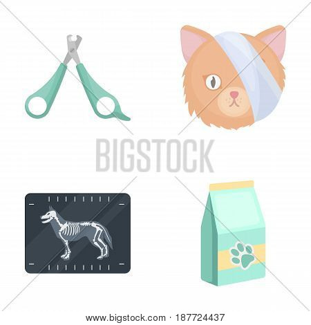 Scissors, cat, bandage, wounded .Vet Clinic set collection icons in cartoon style vector symbol stock illustration .