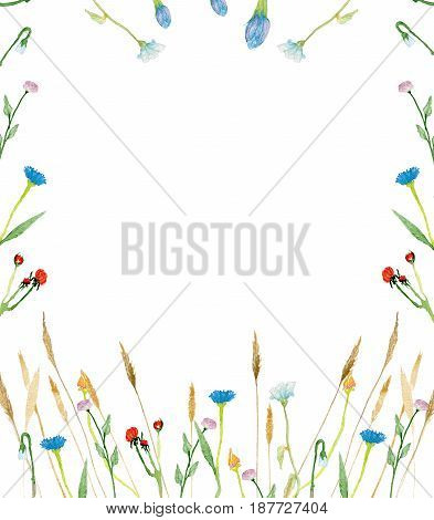 Watercolor floral invitation with wild flowers. Hand painted illustration with wild flowers and herbs isolated on white background. Card for design, print and background