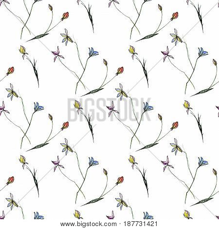Seamless pattern made of hand-drawn wild field flowers isolated on white background
