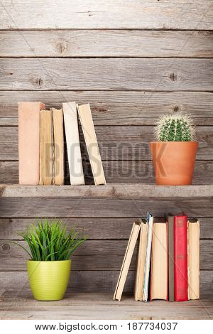 Old books on a wooden shelf and plants. With copy space