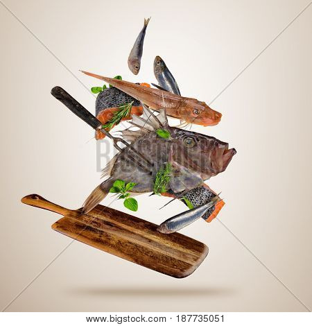 Fresh sea fish flying above wooden board, isolated on gray background. Food preparation, fresh meal ready for cooking. Extra high resolution