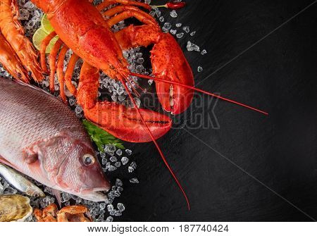 Whole lobster with seafood, crab, mussels, prawns, fish, salmon steak, mackerel and other shells served on crushed ice and black slate