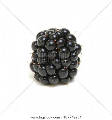 Blackberry isolated on white background.