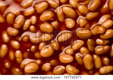 closeup of a bowl full of baked beans