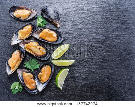 Boiled mussels on the graphite background.