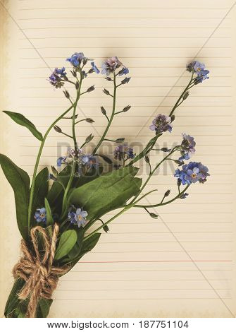 An Old Blank Page Of A Notebook, There Is A Bouquet Of Forget-me-nots On It. Top View, Close-up View