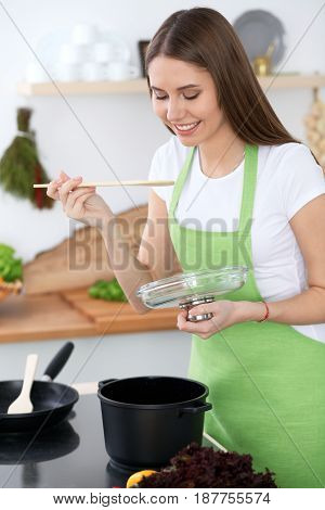 Young happy woman in a green apron cooking in the kitchen. Housewife found a new recipe for her soup. Healthy food and vegetarian concept.