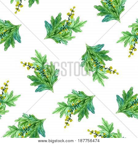 Hand drawn watercolor botanical illustration of the wormwood plant. Wormwood drawing isolated on the white background. Medical herbs illustration, herbarium. seamless pattern