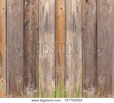 Background textures for design bakground wooden texture