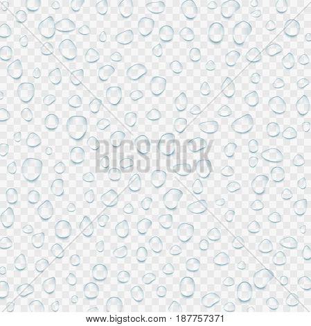 Realistic transparent Water drops. Vector illustration EPS10