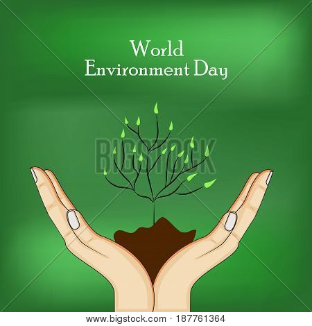 illustration of elements hands soil plant with world environment day text