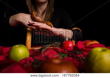 The Snake Participates In The Magical Ritual Of The Witch