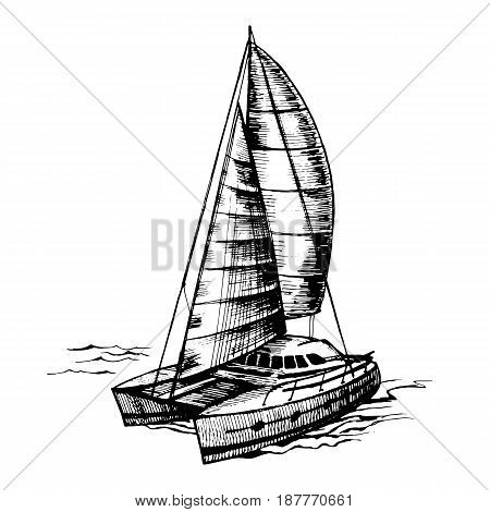 Catamaran sailboat monochrome vector sketch with stylized waves. Sea summer regatta yahtiny extreme sports racing, floating on the water surface.