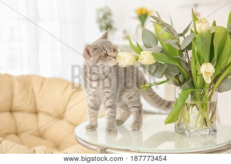 Cute cat and vase with flowers on table in light room