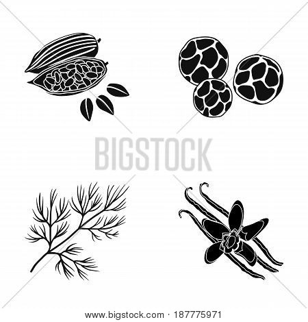 Fried cacao beans, dill, black pepper, vanilla.Herbs and spices set collection icons in black style vector symbol stock illustration .
