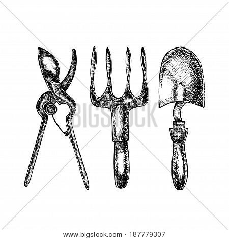 Grafic illustration of garden tools. Isolated on white background
