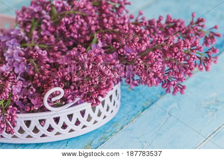 Bouquet of violet lilac in the decorative violet tray soft focus background