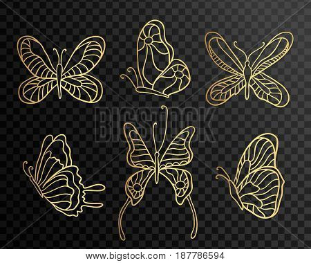 Set of butterflies. Butterfly icons isolated on transparent background. Gold Lace butterfly on black background. Vector illustration.