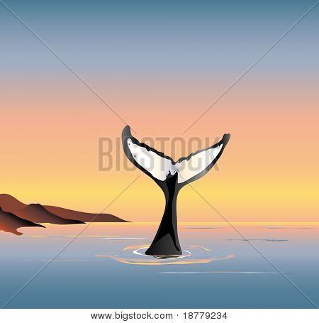 An illustration of a whale fluke above the water at dusk