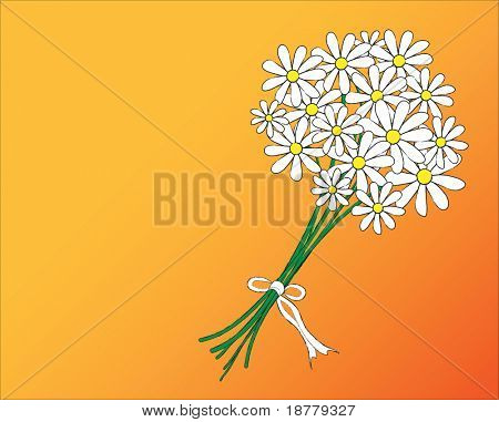 A vector illustration of a posy of daisies tied with a white ribbon. Space for text.