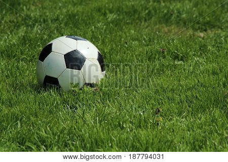 Soccerball on grass/ The football on green lawn.