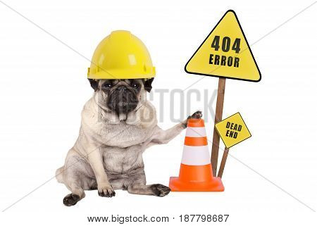 pug dog with yellow constructor safety helmet and cone and 404 error and dead end sign on wooden pole isolated on white background