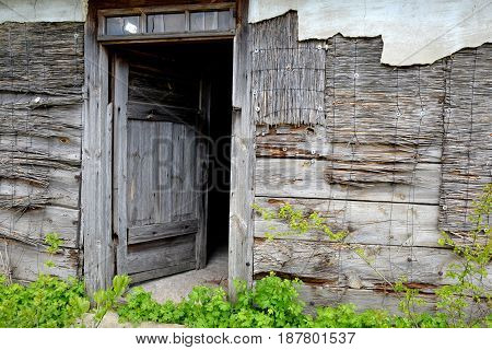 Open door of old wooden abandoned house destroying in the wilderness