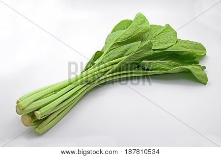 Chinese Flowering Cabbage Isolated on White Background