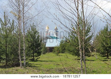 Landscape with trees, church and buildings photo