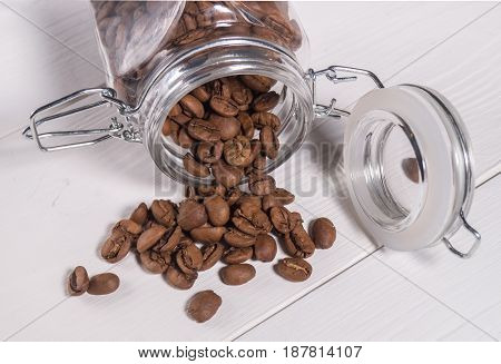The Scattering Of Coffee Beans Maragogype Of Transparent Banks