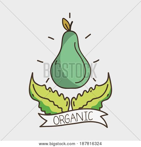 delicious pear with leaves and ribbon design, vector illustration