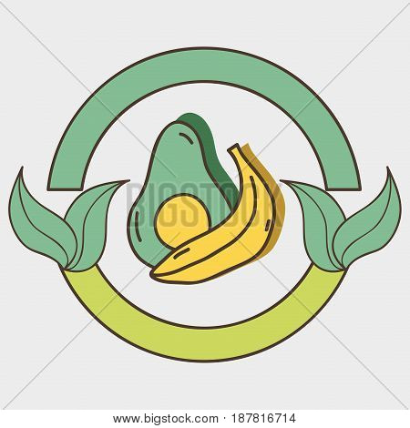 fresh avocado and banana organ fruits with leaves, vector illustration