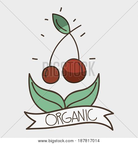 delicious cherry with leaves and ribbon design, vector illustration