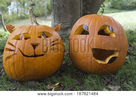Two colorfully personable Halloween Jack-o-lanterns with happy looking faces sit side by side in the autumn leaf strewn grass. One is carved to look like a cat with whiskers and ears and the other resembles an emoticon.