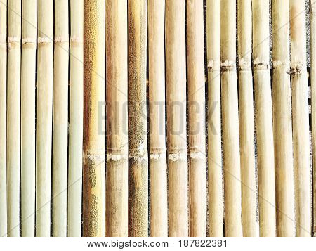 Background Pattern Closed Up of Brown Dried Bamboo Fence Texture with Copy Space for Text Decorated.