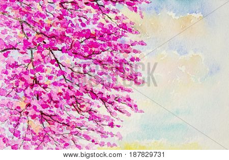 Watercolor landscape original painting on paper colorful of wild himalalan cherry flowers and emotion in sky background congratulate postcard