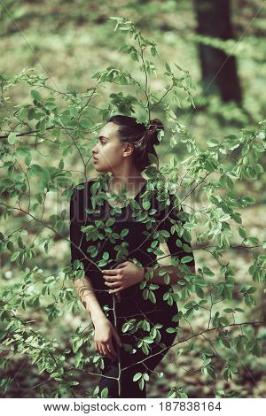 Nature, Wood Life, Girl In Young, Fresh, Green Tree Leaves