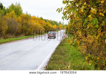 Road And Yellow Trees In Autumn Day