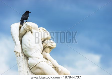 Paris France - May 2 2017: Crow on statue The Spartacus Oath in the Tuileries Gardens on May 02 2017 in Paris France.