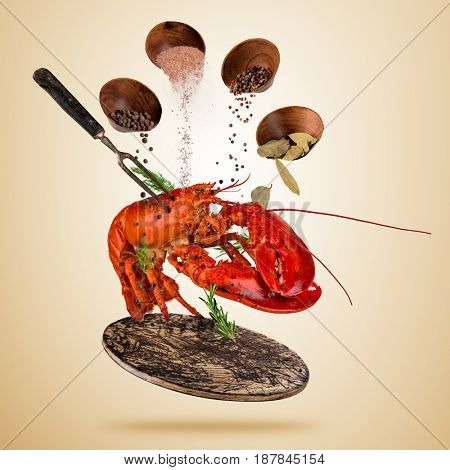 Fresh American lobster with falling spices, flying above wooden board, isolated on brown background. Food preparation, fresh meal ready for cooking. Extra high resolution