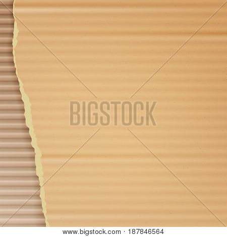 Corrugated Cardboard Vector Background. Realistic Ripped Carton Wallpaper With Torn Edges.