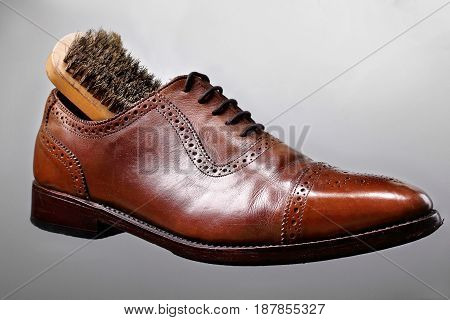Fashion Classical Polished Men's Shades Of Brown Oxford Brogue.with Brush.shoes Care.
