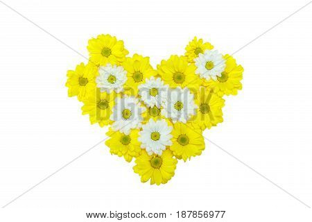Top View Of Beautiful Yellow And White Chrysanthemum Flowers In Heart Shape Isolated On White